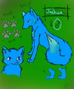 joshua-the-wolf