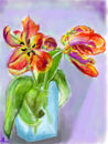 two-parrot-tulips-from