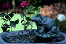 the-frog-fountain
