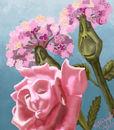 alices-flowers